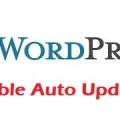 disable auto wordpress updates