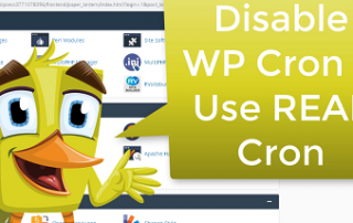 disable wp cron